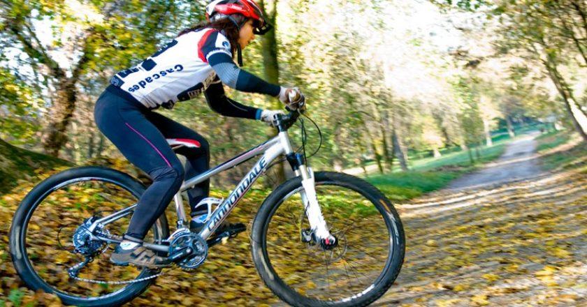 Kerékpározás a Pilisben