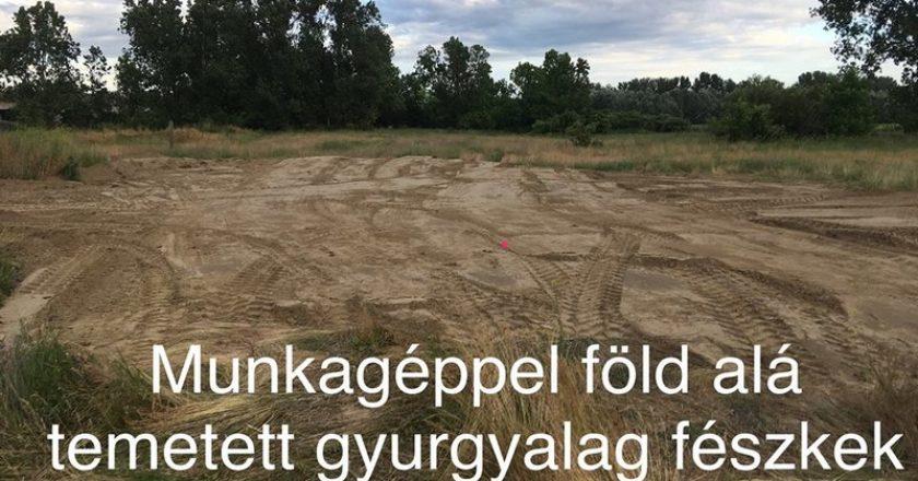 Gyurgyalagok Dunakeszi-Alsón