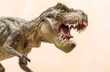 Tyrannosaurus rex dinoszaurusz